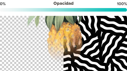 Un diseño gráfico con elementos semitransparentes en un fondo transparente y un patrón opaco.